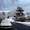 January Snow : A few snaps of our neighborhood after this year's brief snowfall.